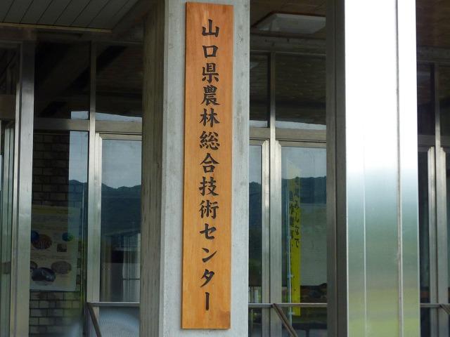 山口農技センター