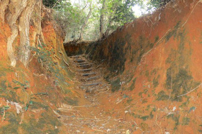 赤土に苔の生した壁